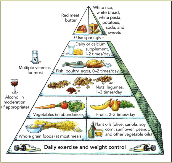Harvard Food Pyramid with food groups