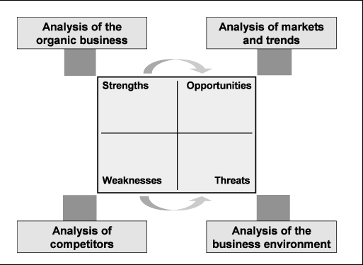 Business analysis template for organic business ideas