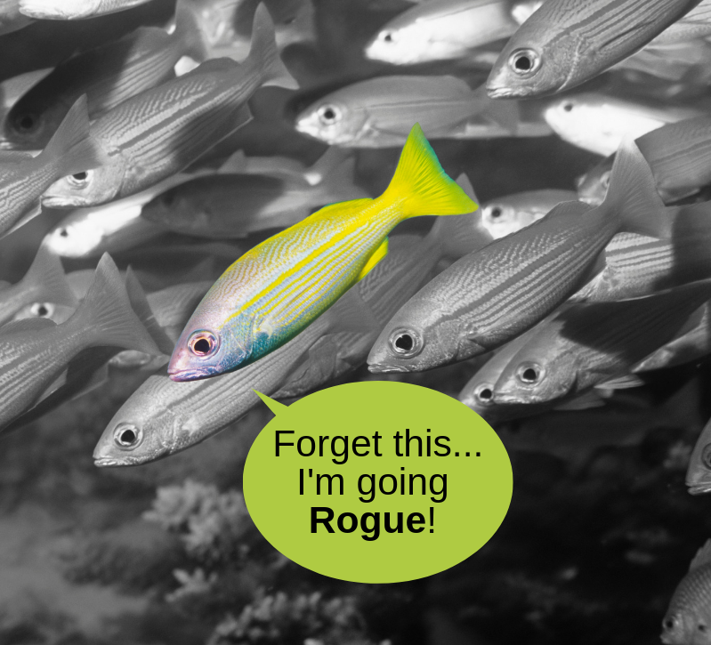 """Black and white school of fish, one fish in full color saying, """"forget this...I'm going rogue!"""""""