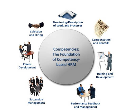 A competency based HRM model that includes the following points: Selection and hiring, work & process descriptions, compensation and benefits, training & development, performance feedback, succession management, and career development.