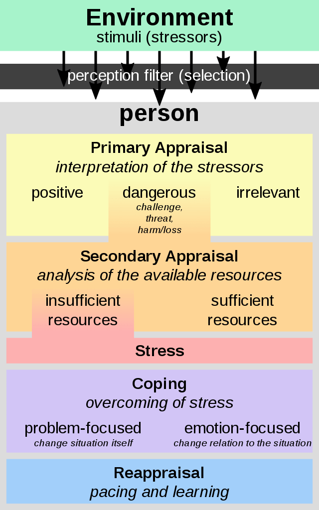 Stress Management chart showing the trickle down from environment, to person, appraisal of situation, a Secondary Appraisal (which leads to stress if insufficient resources), coping to overcome, and reappraisal.