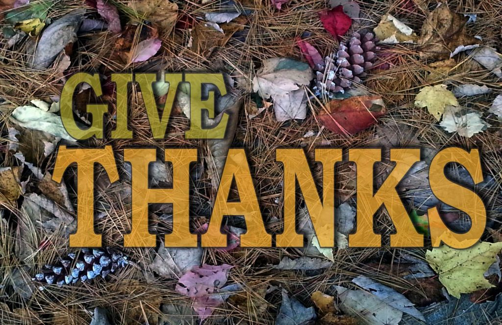 Image of pine needles, leaves, and pinecones with the words GIVE THANKS over them.