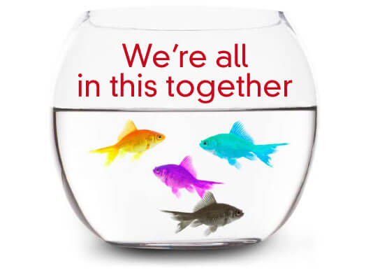 "Image of a fish bowl with different colored fish, and the caption ""We're all in this together."""
