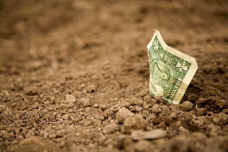 Photo of a dollar bill sticking up out of the dirt.
