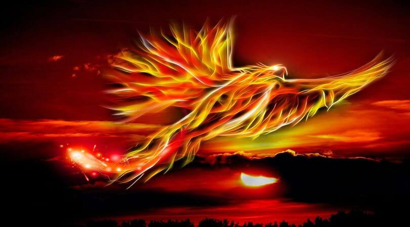 Image of a phoenix rising, as a sign of plannig for disaster recovery.