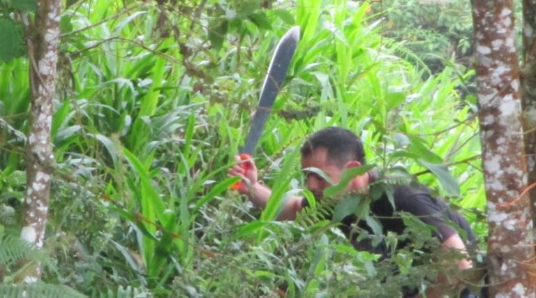 Photo of a man with a macheting hunting through the jungle [in search of payroll resources].