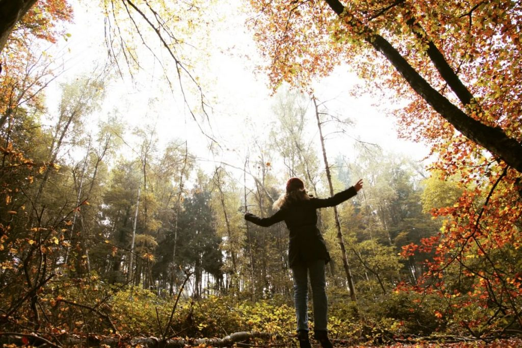 Image of a woman standing in the middle of a forest in the fall.