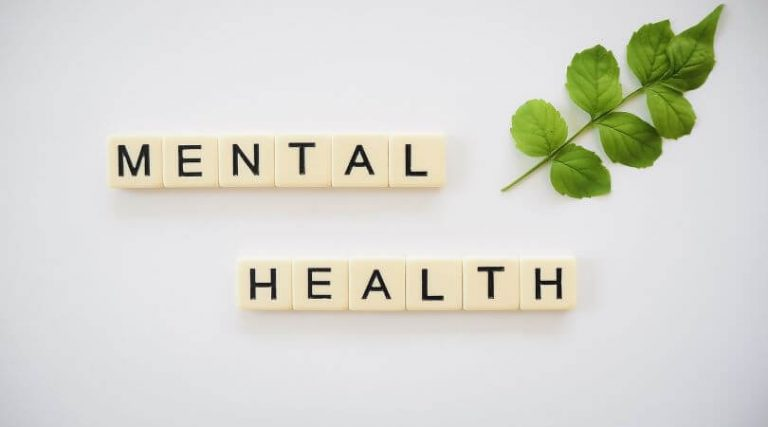 Image of blocks spelling the words MENTAL HEALTH, and a stem with leaves next to the blocks.