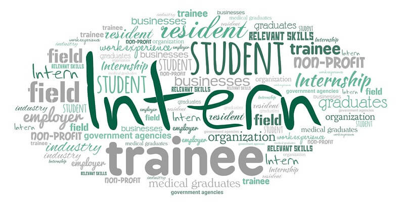 """A word cloud featuring """"Intern,"""" which is oneof the different types of employees."""
