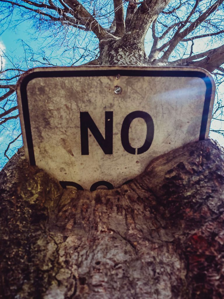 Photo of a sign with the word NO busried in the trunk of a tree.